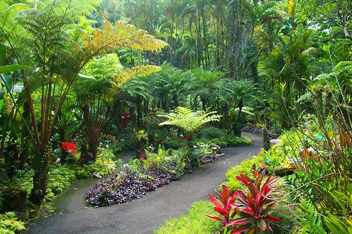Hawaii Tropical Botanical Garden Hawaii On A Map