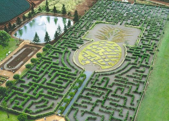 Dole Pineapple Plantation At Oahu Hawaii Hawaii On A Map