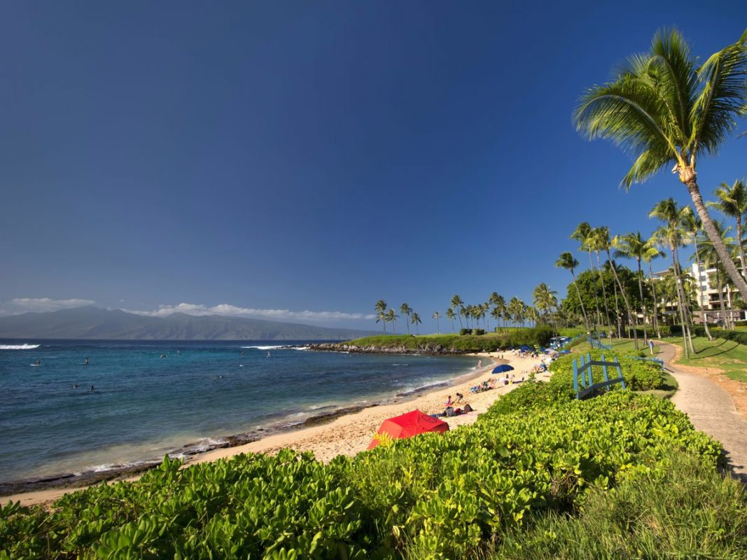 Maui hawaii beaches